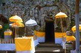 о. Бали, Гоа Гаджах (Слоновья Пещера)