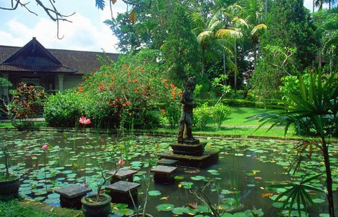 о. Бали, Убуд, Парк