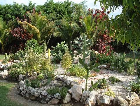 Ранавей Бей, Сад в Grand Lido Branco
