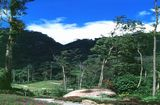 о. Лангкави, Природа